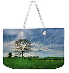 Weekender Tote Bag featuring the photograph Spring Coming On by Bill Pevlor