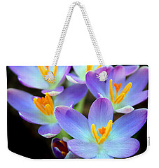 Weekender Tote Bag featuring the photograph Spring Crocus by Jessica Jenney