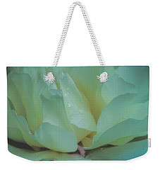 Weekender Tote Bag featuring the photograph Spring Dreams by Chris Lord