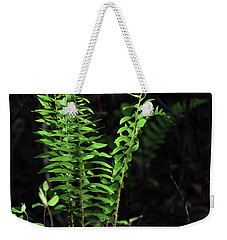 Weekender Tote Bag featuring the photograph Spring Ferns by Skip Willits