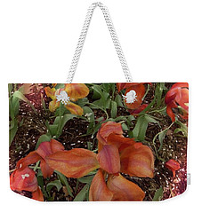 Weekender Tote Bag featuring the photograph Spring Fever by Kathie Chicoine