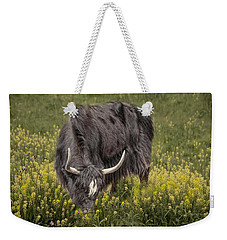 Weekender Tote Bag featuring the photograph Spring Fields by Robin-Lee Vieira