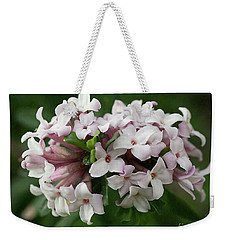 Weekender Tote Bag featuring the photograph spring Garden -- everblooming Daphne by Ann Jacobson