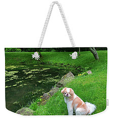 Weekender Tote Bag featuring the photograph Spring Green Japanese Chin by Roger Bester