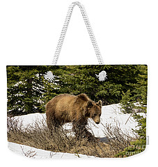 Spring Grizzly Weekender Tote Bag