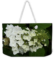 Spring Is Busting Out All Over Weekender Tote Bag
