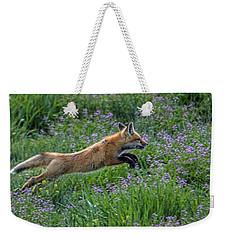 Spring Kit Weekender Tote Bag