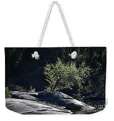Spring Light Weekender Tote Bag by Skip Willits