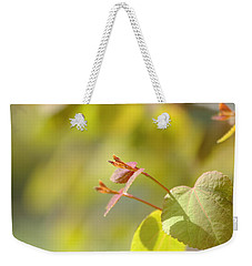 Weekender Tote Bag featuring the photograph Spring Macro2 by Jeff Burgess