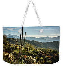 Weekender Tote Bag featuring the photograph Spring Morning In The Sonoran  by Saija Lehtonen