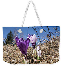 Spring On Bule Weekender Tote Bag by Nick Mares