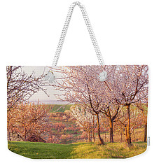 Weekender Tote Bag featuring the photograph Spring Orchard With Morring Sun by Jenny Rainbow