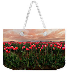 Weekender Tote Bag featuring the photograph Spring Rainbow by Ryan Manuel