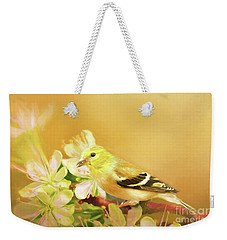 Weekender Tote Bag featuring the photograph Spring Song Bird by Darren Fisher