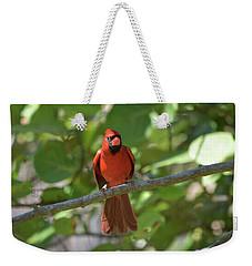 Spring Training Cardinal Weekender Tote Bag