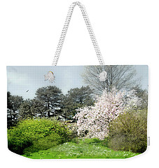 Weekender Tote Bag featuring the photograph Spring Treasures by Diana Angstadt