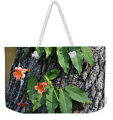 Weekender Tote Bag featuring the photograph Vinery by Skip Willits