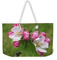 Springtime Apple Blossom Weekender Tote Bag by Gill Billington
