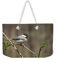 Springtime Chickadee Weekender Tote Bag