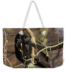 Weekender Tote Bag featuring the photograph Springtime Crow Square by Bill Wakeley