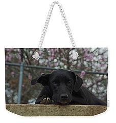 Springtime Independence Weekender Tote Bag