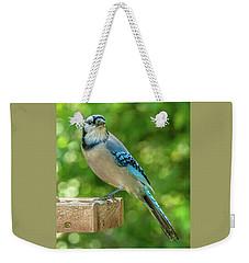 Springtime Jay Weekender Tote Bag