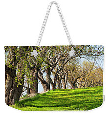 Weekender Tote Bag featuring the photograph Springtime Maples by Alan L Graham