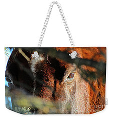 Weekender Tote Bag featuring the photograph Spud by Ann E Robson