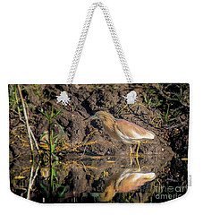 Squacco Heron - Ardeola Ralloides Weekender Tote Bag by Jivko Nakev