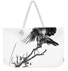 Squaw Creek Red-tail Weekender Tote Bag