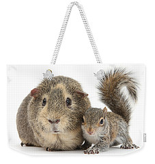 Squirrel And Guinea Weekender Tote Bag