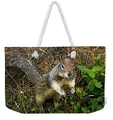 Squirrel At Moonstone Beach, California 001 Weekender Tote Bag