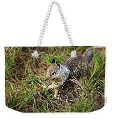 Squirrel At Moonstone Beach, California 002 Weekender Tote Bag