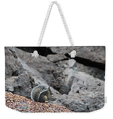 Weekender Tote Bag featuring the photograph Squirrel At Sparks Lake Do Not Make Me Jump by Marie Neder