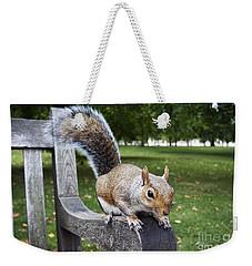 Squirrel Bench Weekender Tote Bag