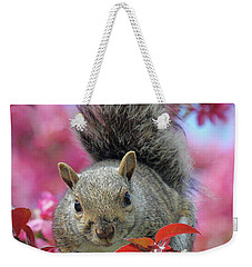 Weekender Tote Bag featuring the photograph Squirrel In Apple Blossoms by Doris Potter