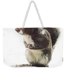 Weekender Tote Bag featuring the photograph Squirrel In The Snow by Roger Bester