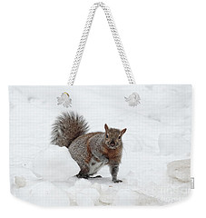 Squirrel In Winter Snow Weekender Tote Bag by Charline Xia