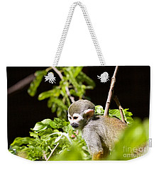 Squirrel Monkey Youngster Weekender Tote Bag