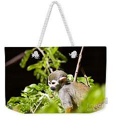 Squirrel Monkey Youngster Weekender Tote Bag by Afrodita Ellerman