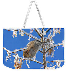 Weekender Tote Bag featuring the photograph Squirrel On Icy Branches by Doris Potter