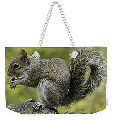 Squirrel, On The Hop Weekender Tote Bag