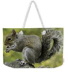 Squirrel, On The Hop Weekender Tote Bag