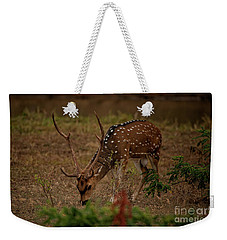 Sri Lankan Axis Deer Weekender Tote Bag