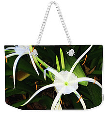 Weekender Tote Bag featuring the photograph St. A S Spider Flower Couple by Daniel Hebard
