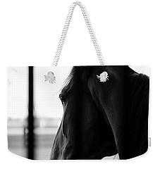 Stable Dreaming Weekender Tote Bag