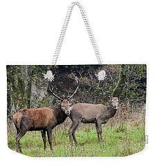 Stag And Doe  Weekender Tote Bag