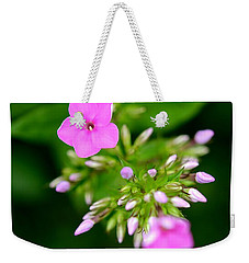 Weekender Tote Bag featuring the photograph Stages Of Spring by Corinne Rhode