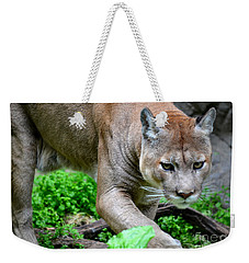 Stalking Weekender Tote Bag by Deb Halloran