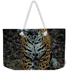 Weekender Tote Bag featuring the photograph Stalking by Phil Abrams
